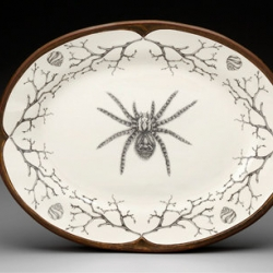 Original pencil drawings on ceramics by artist Laura Zindel. Tarantulas to blue birds.