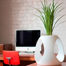 'Cultural architect' Helen Kontouris has created this planter for Ambius. The VOC-free planter comes in small desktop, medium and large.
